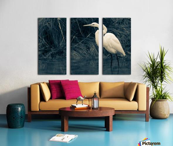 Great White Egret ap 1839 B&W Toile Multi-Panneaux