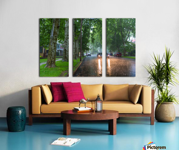 Summer Rain ap 2892 Split Canvas print