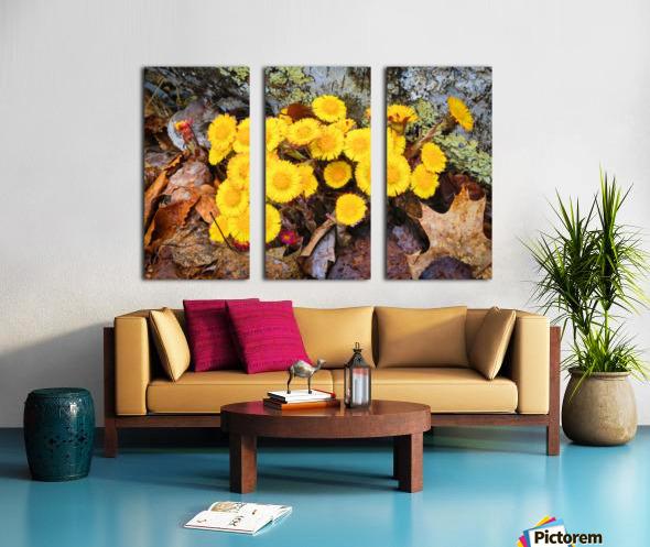 Flowers ap 2222 Split Canvas print