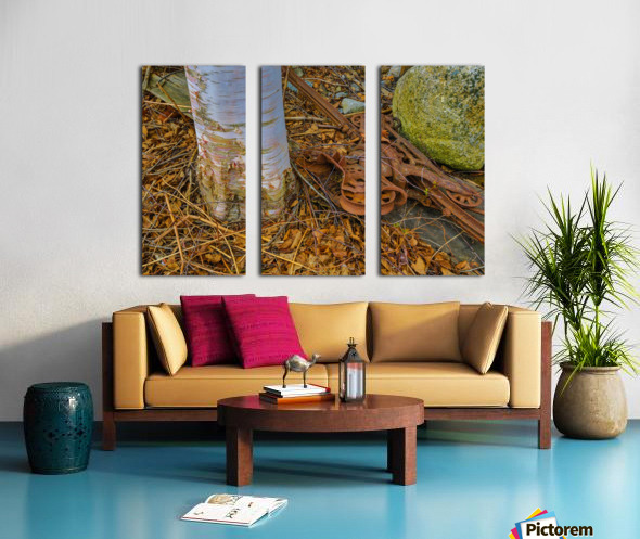 Barn Trolley ap 2241 Split Canvas print