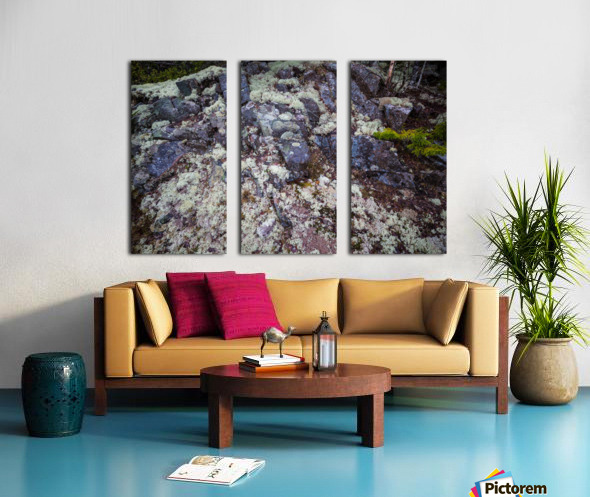 Purple Rocks ap 2289 Split Canvas print