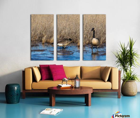 Canada Geese ap 2779 Split Canvas print