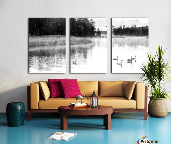 Swan Family ap 2694 B&W Split Canvas print