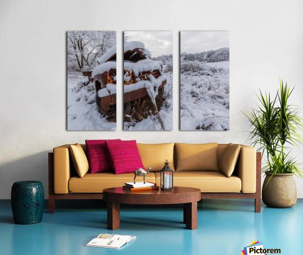Forgotten ap 2857 Split Canvas print