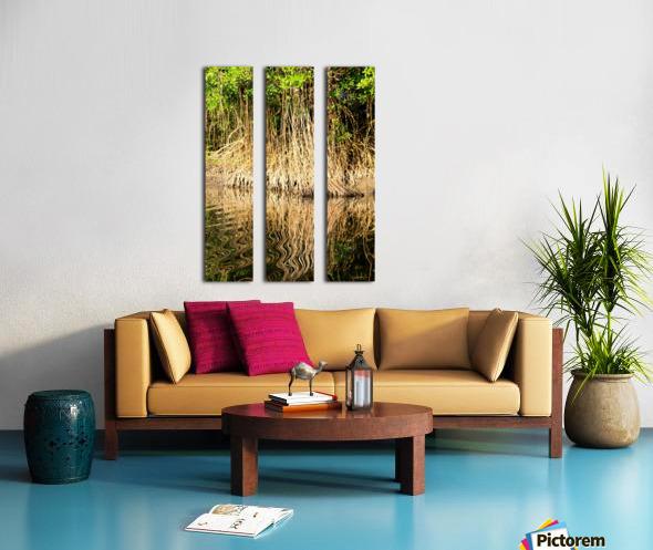 Mangrove roots Split Canvas print
