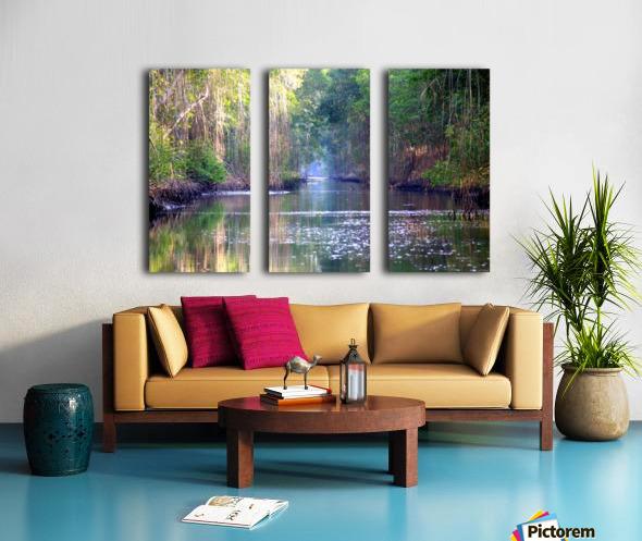 Caroni Swamp   Trinidad Split Canvas print