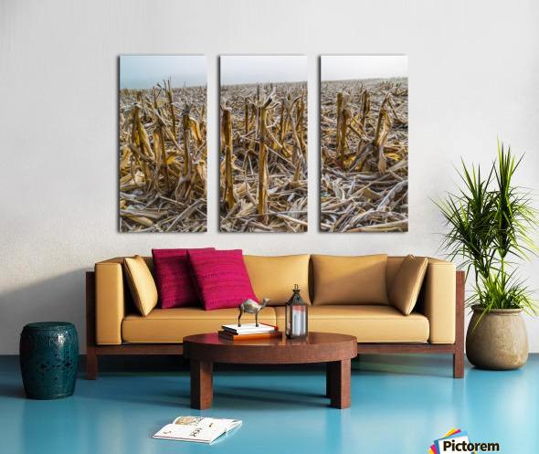 Frost ap 2031 Split Canvas print