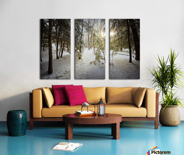 Sunlight ap 2731 Split Canvas print