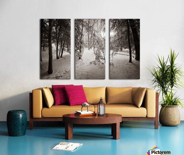 Sunlight ap 2731 B&W Split Canvas print
