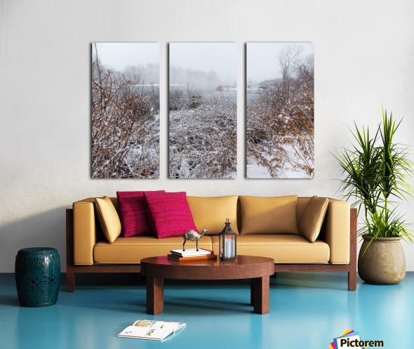 Winter ap 2708 Split Canvas print