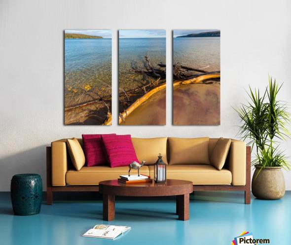 Driftwood ap 2481 Split Canvas print