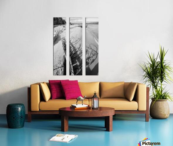 Driftwood ap 2482 B&W Split Canvas print