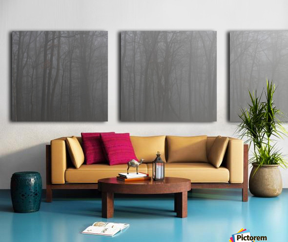 Treeline apmi 1546 Split Canvas print