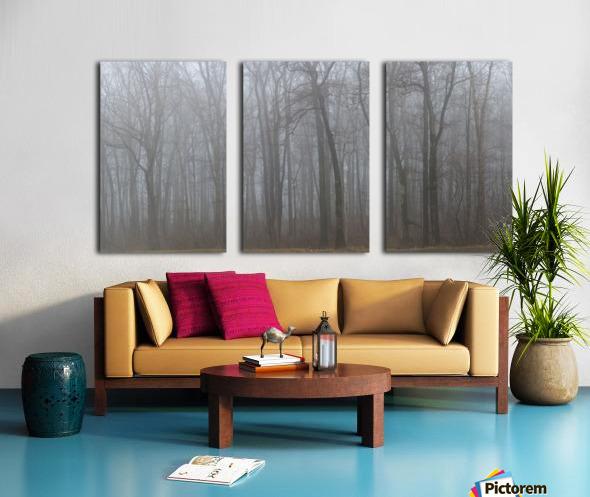 Treeline apmi 1547 Split Canvas print