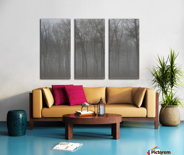 Treeline & Buck apmi 1548 Split Canvas print
