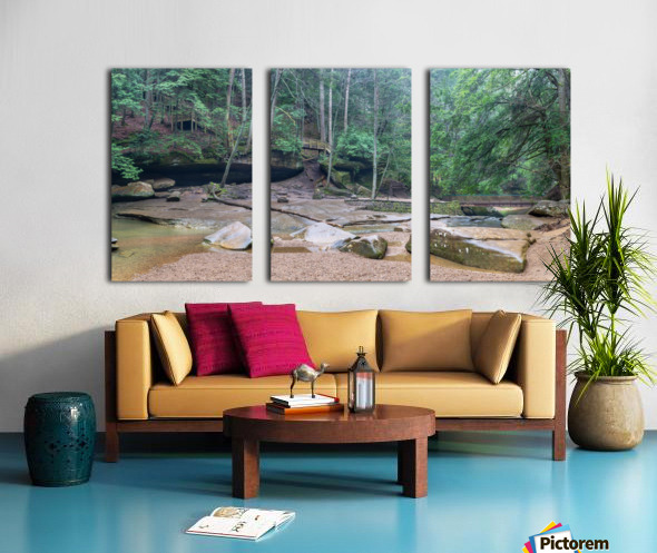 Near Cedar Falls apmi 1632 Split Canvas print