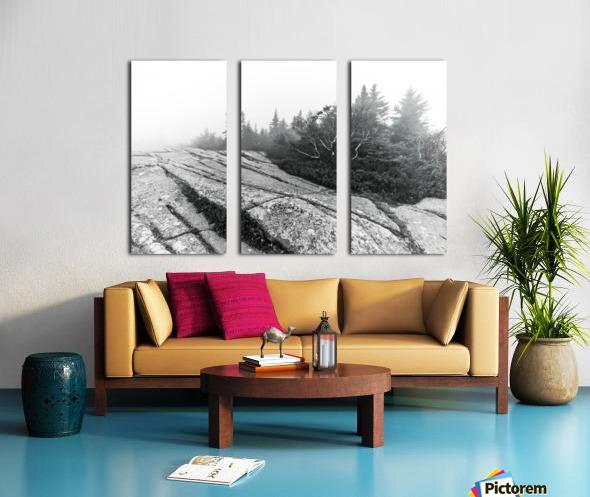 Lichen and Granite ap 2340 B&W Split Canvas print