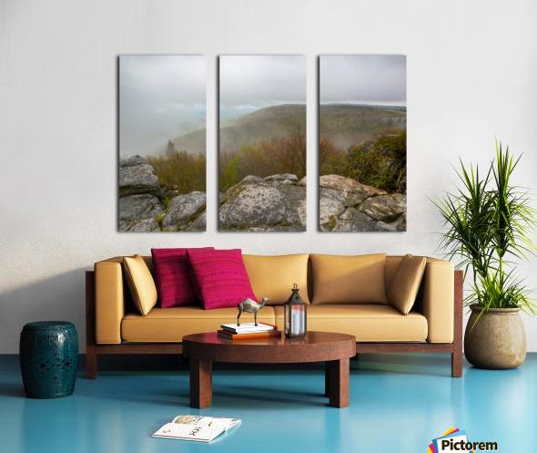 Low Ceiling ap 2945 Split Canvas print