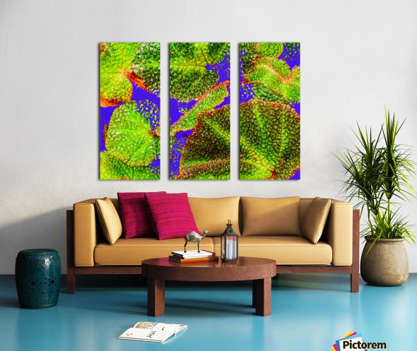 Tropical Colours Split Canvas print