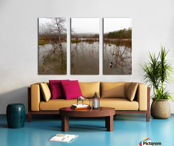 Beaver Pond ap 2357 Split Canvas print
