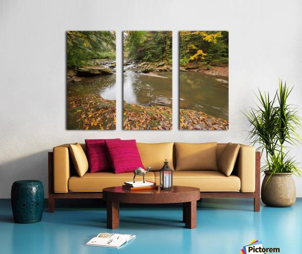 Fall Color ap 2453 Split Canvas print