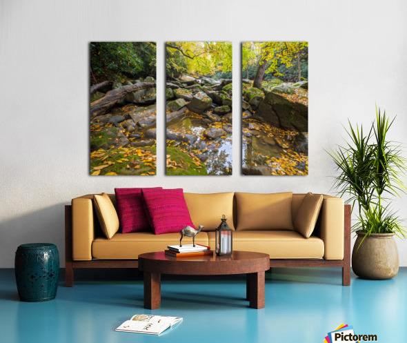 Reflections ap 2476 Split Canvas print