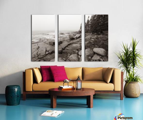 Boulders ap 2256 B&W Split Canvas print