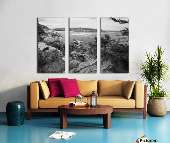 Acadia ap 2376 B&W Split Canvas print