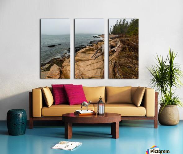 Driftwood ap 2257 Split Canvas print