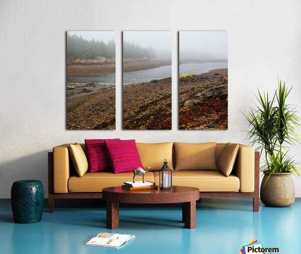 Low Tide ap 2296 Split Canvas print