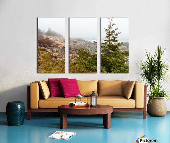 Lone Pine ap 2284 Split Canvas print
