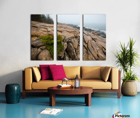 Lone Pine ap 2286 Split Canvas print