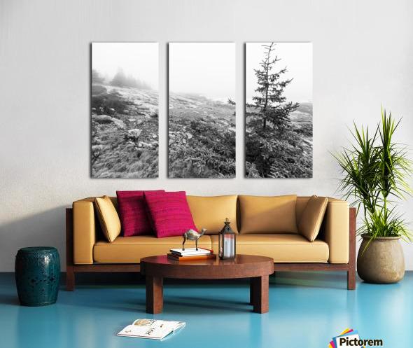 Lone Pine ap 2284 B&W Split Canvas print