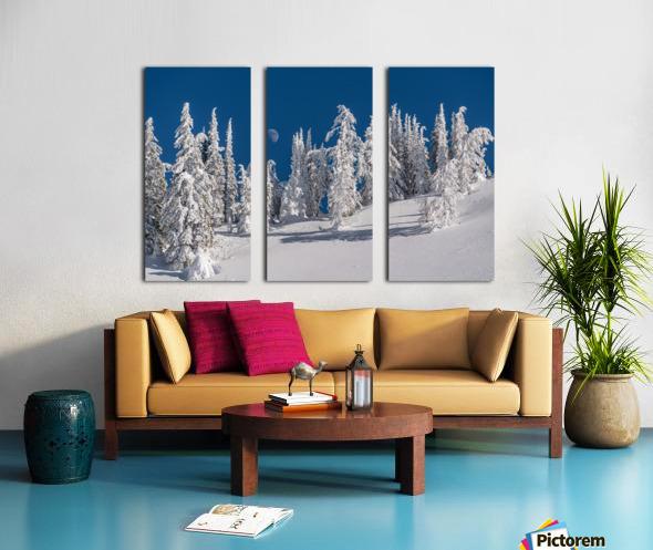 Alpine moon Split Canvas print