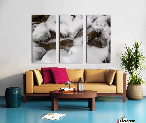 Ice ap 2726 B&W Split Canvas print