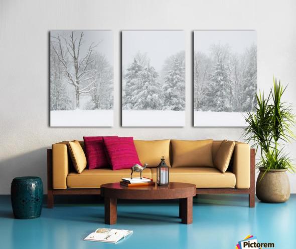Treeline apmi 1569 Split Canvas print