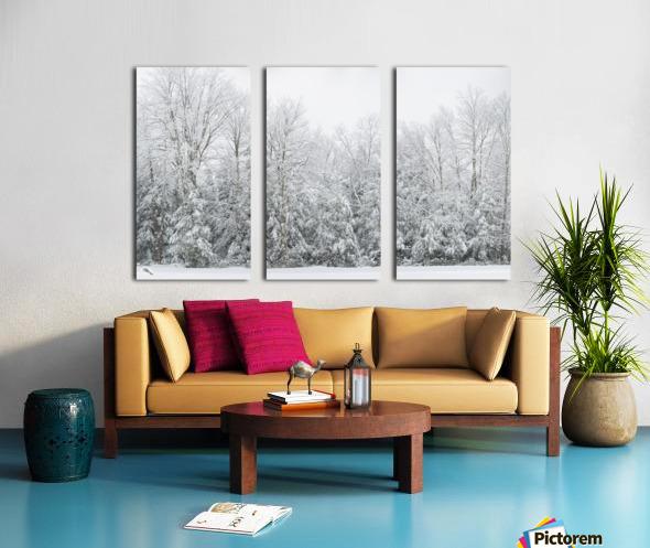 Treeline apmi 1573 Split Canvas print
