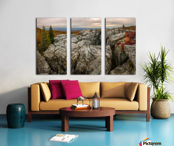 Bear Rocks Preserve apmi 1791 Split Canvas print
