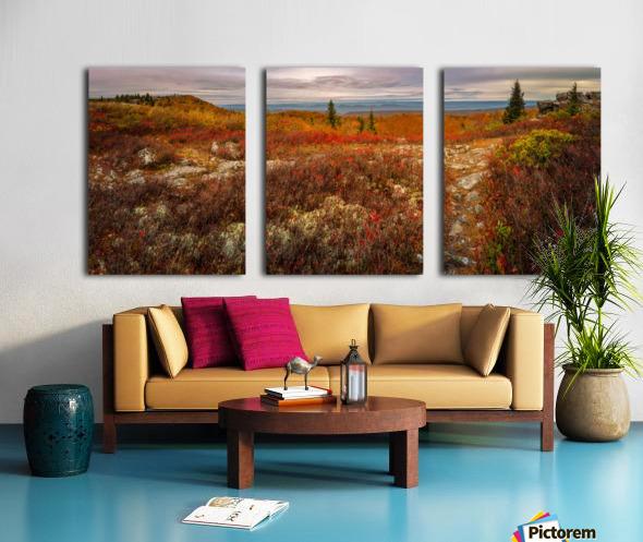 Colors of Nature apmi 1782AL Toile Multi-Panneaux