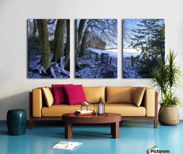 Woods in the Snow Split Canvas print