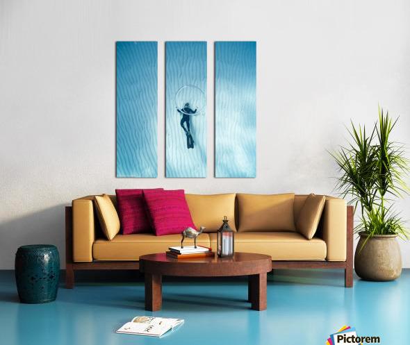 diver 3 Split Canvas print