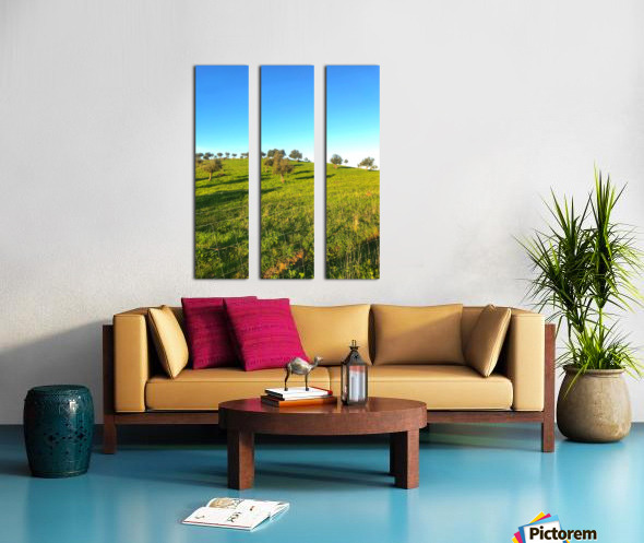 Landscape of central Portuga Split Canvas print