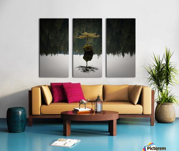 Reflection on a Bonsai Tree Split Canvas print