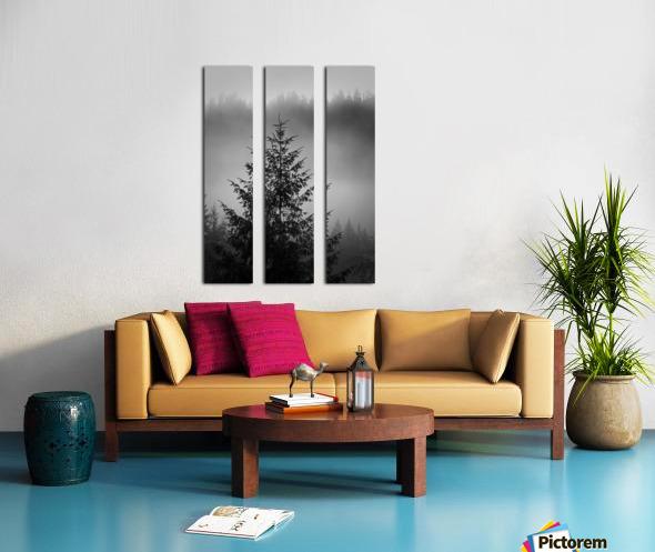 Lonliest Tree Split Canvas print