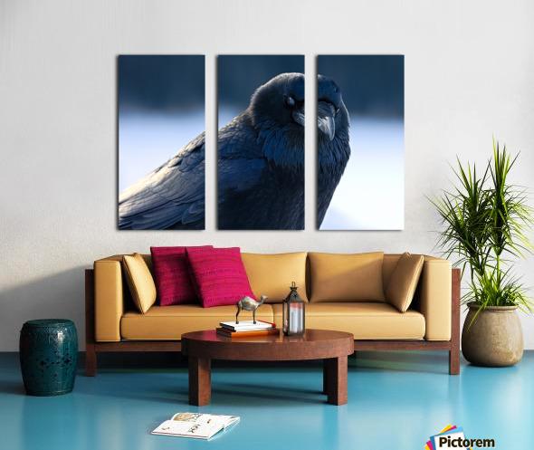 Raven Split Canvas print