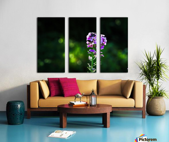 Royal Flower Split Canvas print