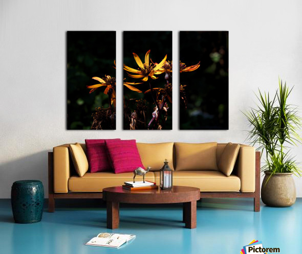 Fire Flower Split Canvas print