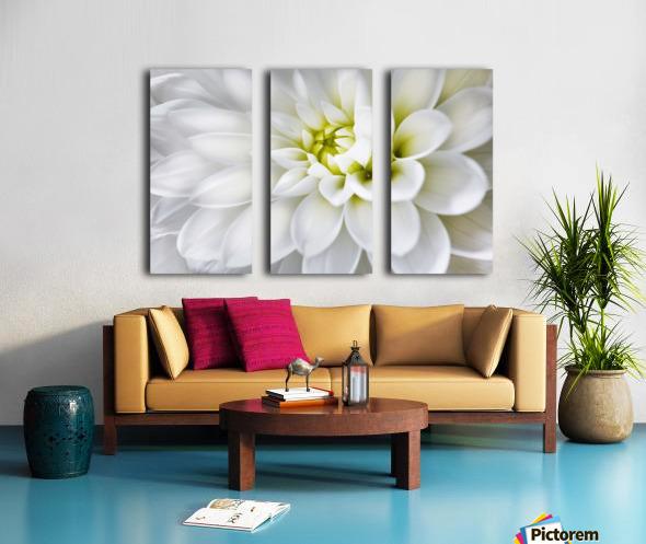 White Dahlia Split Canvas print