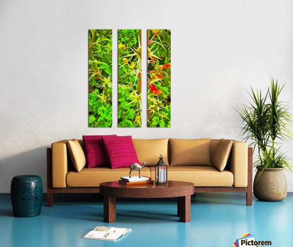 Eryngium Pop Art Style Split Canvas print