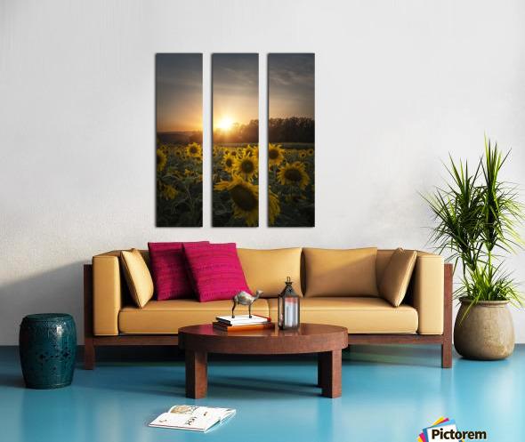 Sunflower Sunset Split Canvas print